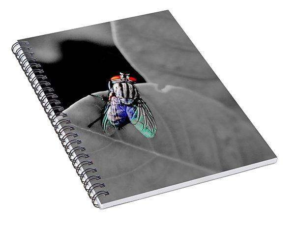 Just A Fly Spiral Notebook