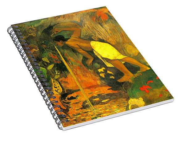 Pape Moe Spiral Notebook