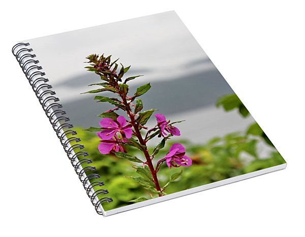 Wild Flowers In Hjelmeland Rogaland Norway By Julia Fine Art            Spiral Notebook