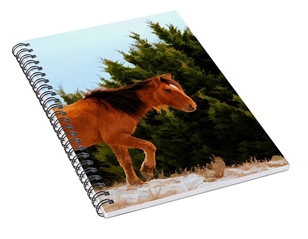 Carrot Island Pony Spiral Notebook