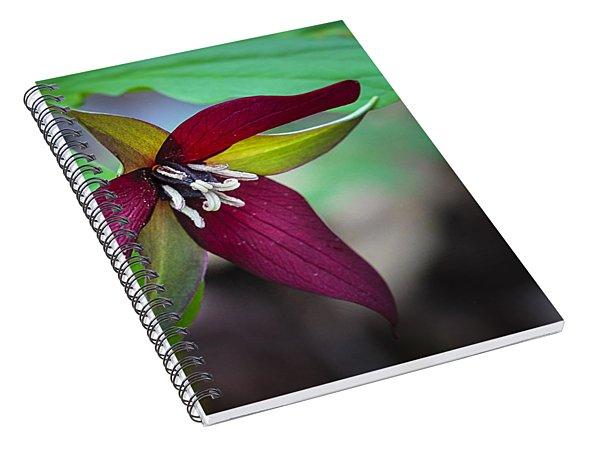 Red Trillium Spiral Notebook