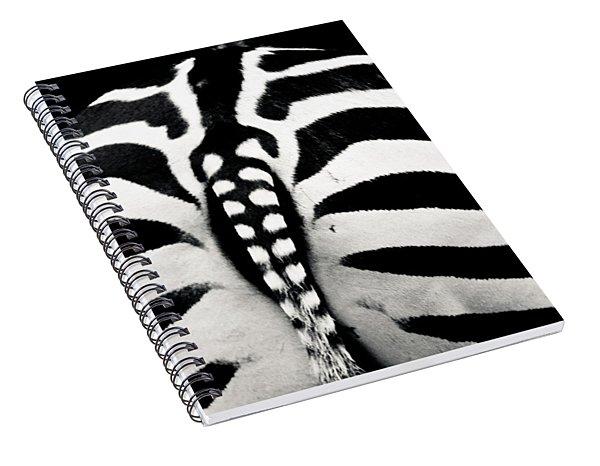 Striped Rear View Spiral Notebook