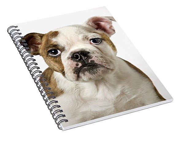 110307p153 Spiral Notebook