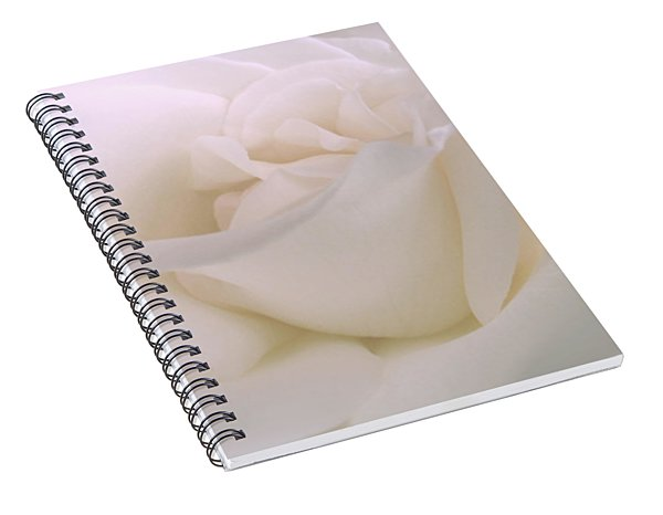 Softness Of A White Rose Flower Spiral Notebook