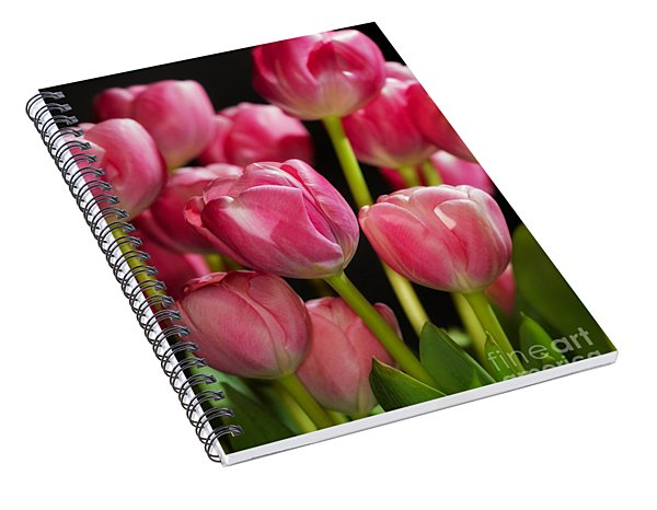 A Bouquet Of Pink Tulips Spiral Notebook