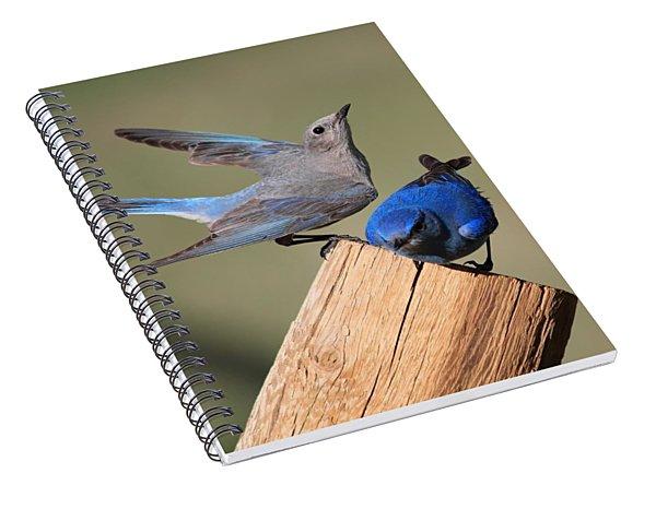 A Great Pair Spiral Notebook
