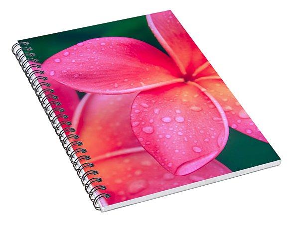 Aloha Hawaii Kalama O Nei Pink Tropical Plumeria Spiral Notebook