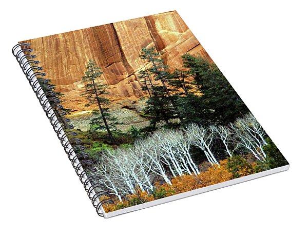 Arizona's Betatkin Aspens Spiral Notebook