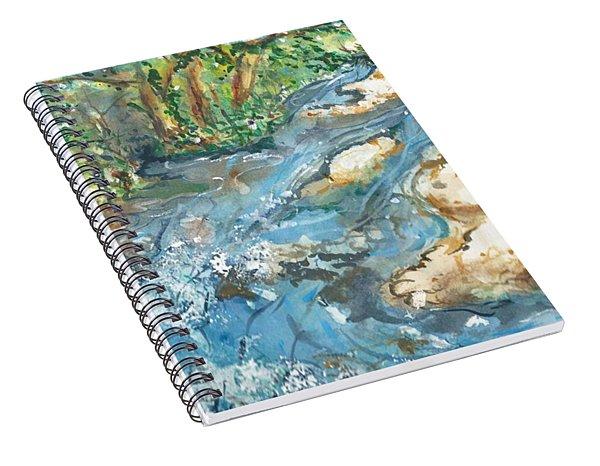 Arkansas Stream Spiral Notebook