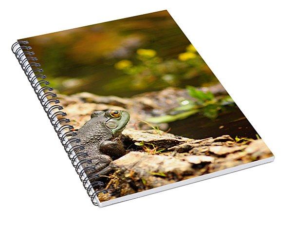 Baby Bullfrog Spiral Notebook