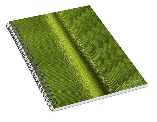 Banana Leaf Rib Spiral Notebook