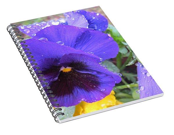 Beauties In The Rain Spiral Notebook
