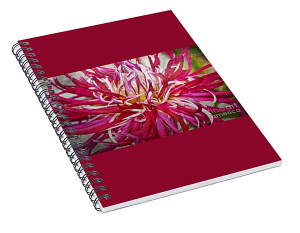 Beautiful Texturized Red Spider Dahlia Flower Macro Spiral Notebook
