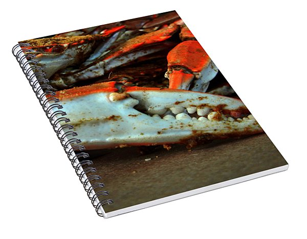 Big Crab Claw Spiral Notebook