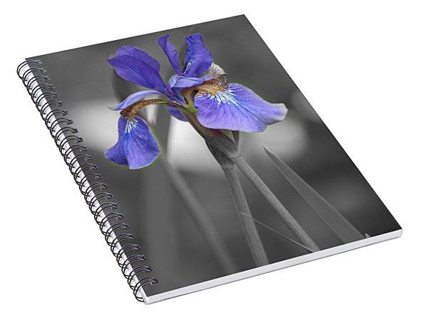 Black And White Purple Iris Spiral Notebook