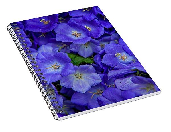 Blue Bells Carpet. Amsterdam Floral Market Spiral Notebook