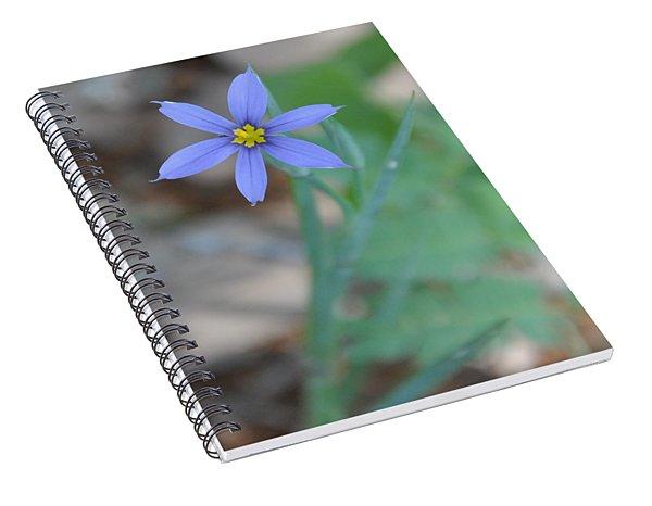 Blue Flower Spiral Notebook