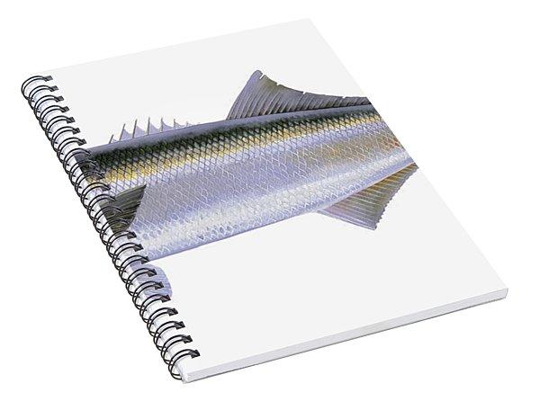 Bluefish Spiral Notebook