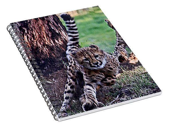 Cheetah Cubs Spiral Notebook