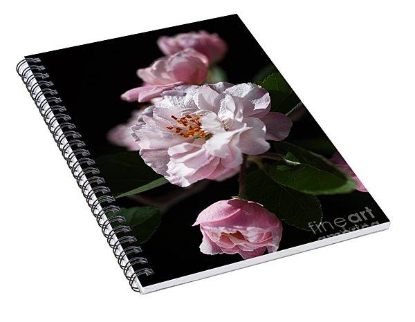 Crabapple Flowers Spiral Notebook