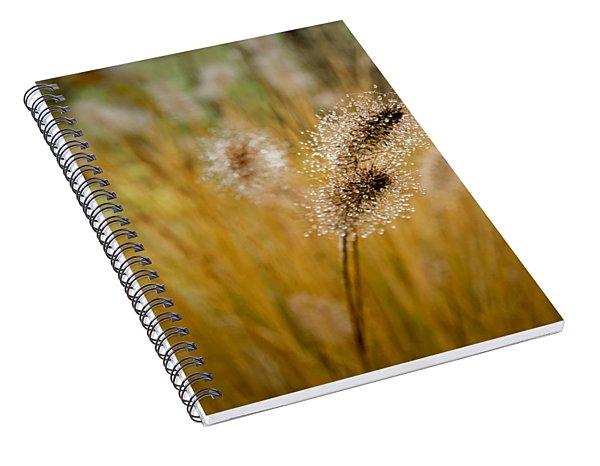 Dew On Ornamental Grass No. 4 Spiral Notebook