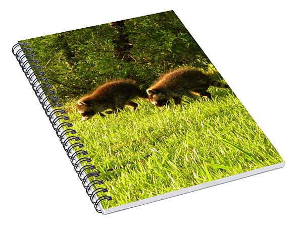 Early Evening Explorers Spiral Notebook