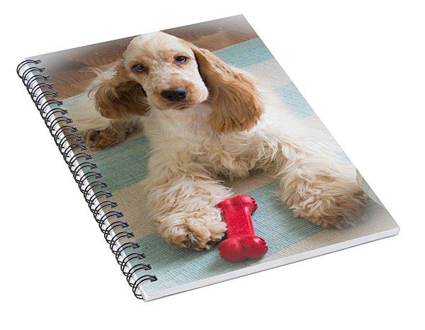 English Cocker Spaniel - Orange Roan Color Spiral Notebook