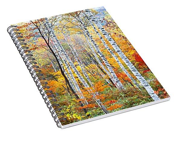 Fall Trees, Shinhodaka, Gifu, Japan Spiral Notebook