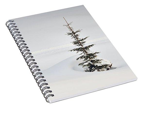 Fir Tree And Lots Of Snow In Winter Kleinwalsertal Austria Spiral Notebook