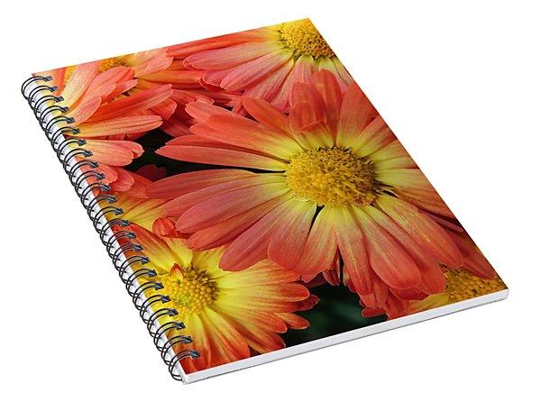 Floral Frenzy 2 Spiral Notebook
