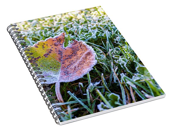 Frostbite Spiral Notebook