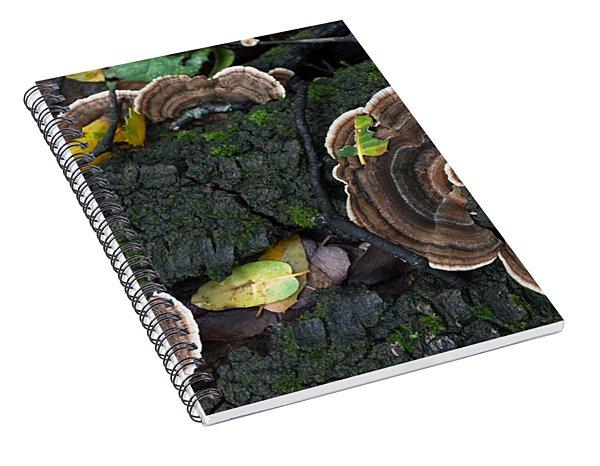 Fungi Contrast Spiral Notebook