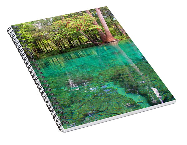 Ginnie Spring Along The Santa Fe Spiral Notebook