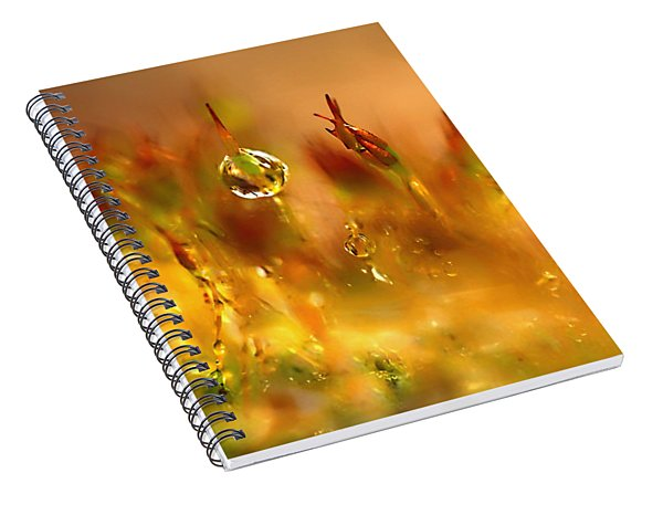 Golden Palette Spiral Notebook