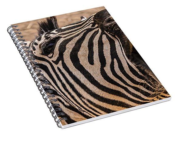 Got Dental? Spiral Notebook