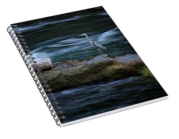 Great Blue Heron Spiral Notebook