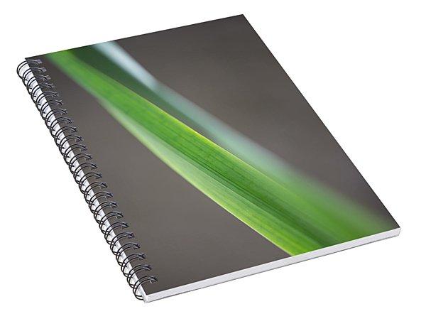 Green Abstract Spiral Notebook