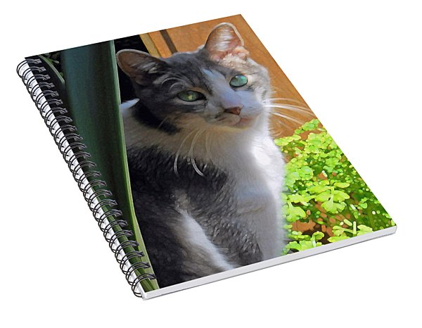 Green Eyed Cat Spiral Notebook