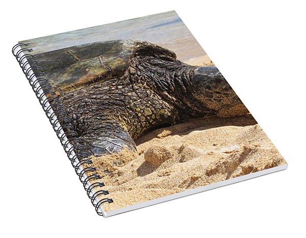 Green Sea Turtle 2 - Kauai Spiral Notebook