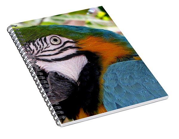 Harvey Spiral Notebook