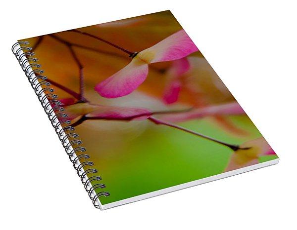 Japanese Maple Seedling Spiral Notebook