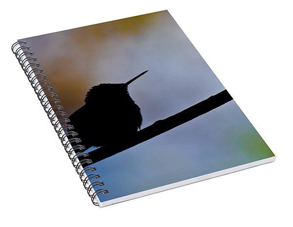 Just Chillin Spiral Notebook