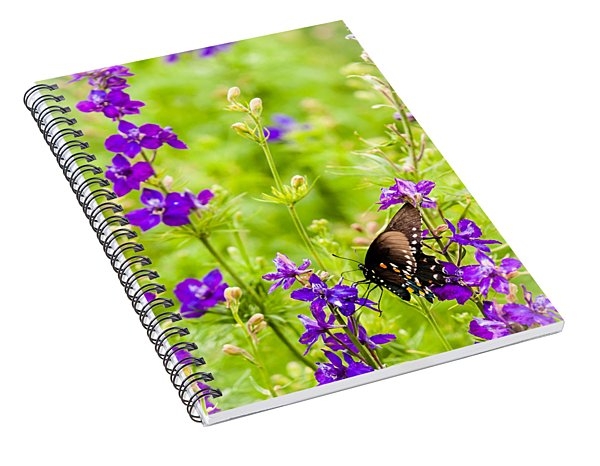 Larkspur Visitor Spiral Notebook