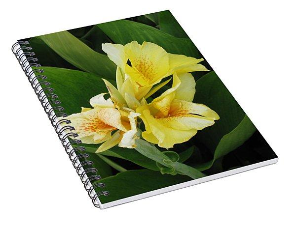 Lilly Of Shreveport Spiral Notebook