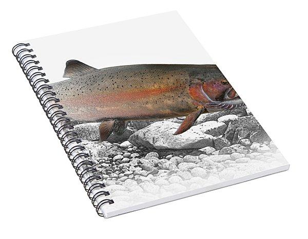 Migrating Steelhead Rainbow Trout Spiral Notebook