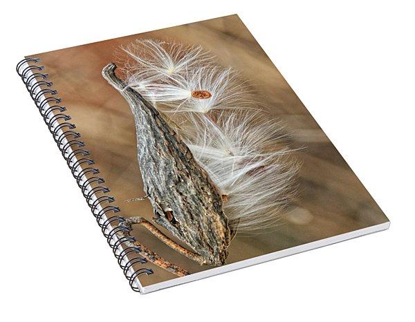 Milkweed Pod And Seeds Spiral Notebook