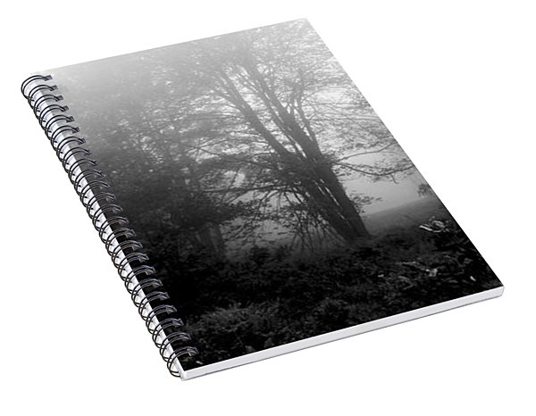 Misty Morning With Tree Silhouettes Spiral Notebook