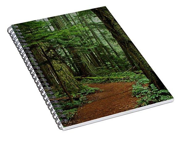 Mystical Path Spiral Notebook