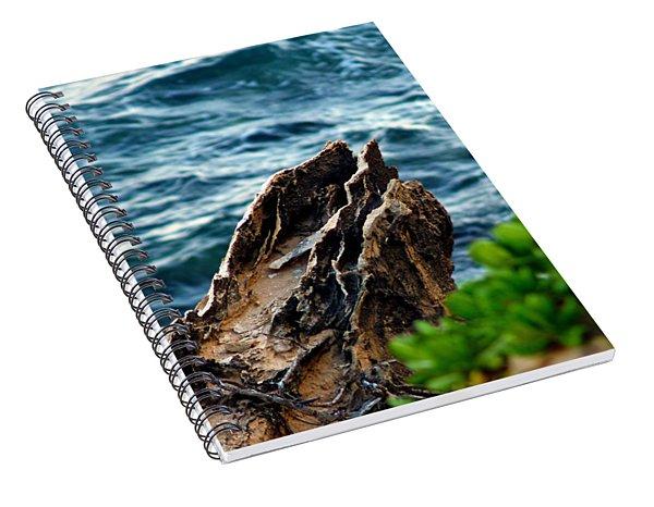 Natures Sculptures Vii Spiral Notebook
