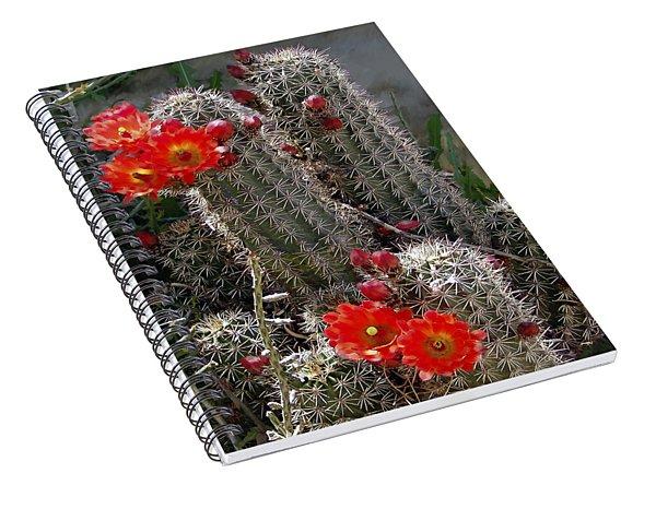 New Mexico Cactus Spiral Notebook